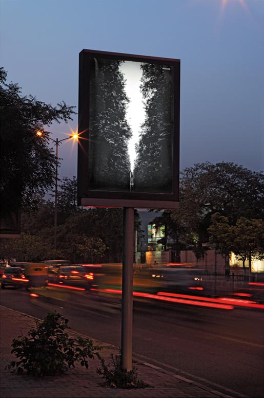 philips-day-light-poster-forest
