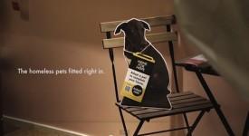 用領養代替購買!!IKEA 也為狗狗尋找更美好的生活!!