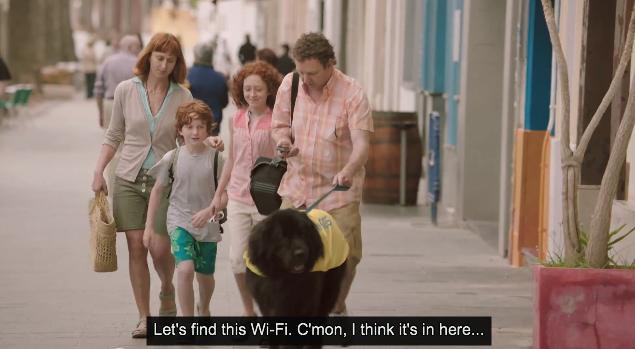 """Wifi Dogs"