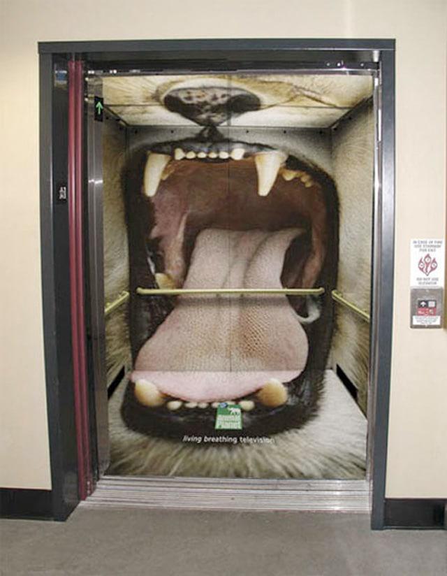 Elevator6