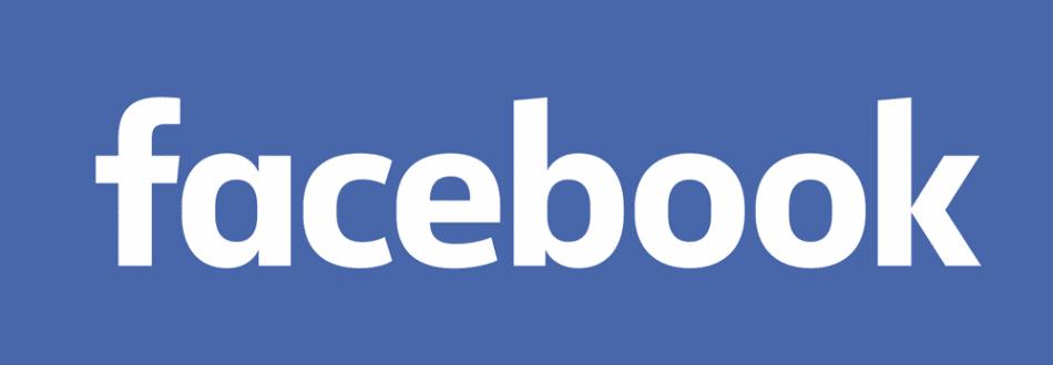 facebook_2015_logo_detail1