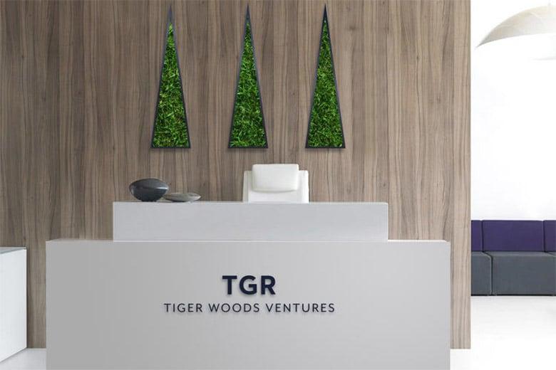 老虎伍茲推出個人品牌,整合旗下企業重塑商業形像_06