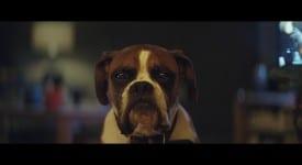 John Lewis 2016 年聖誕廣告來了!這一次走歡樂路線