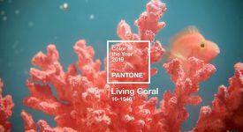 PANTONE發布2019年度代表色為珊瑚橘