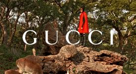 Gucci 成了動物控