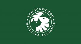 數一數藏了幾隻動物?聖地牙哥動物園野生動物聯盟新LOGO
